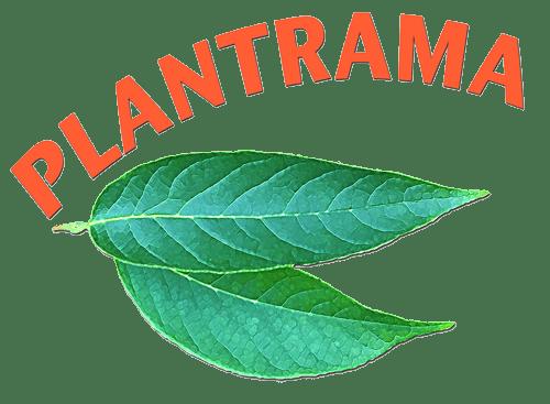 Plantrama Logo