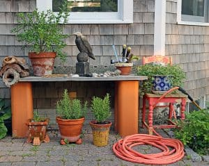 Six must-have tools for the yard and garden.