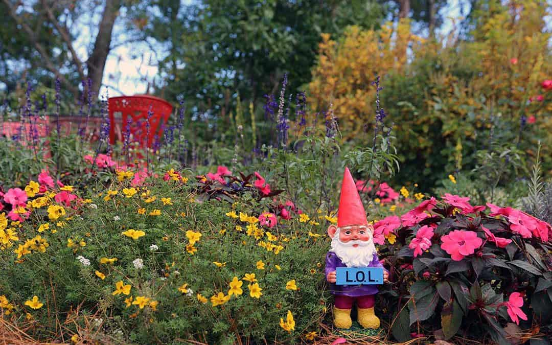 Rhubarb, Curb Appeal and The Invasion of the Garden Gnomes