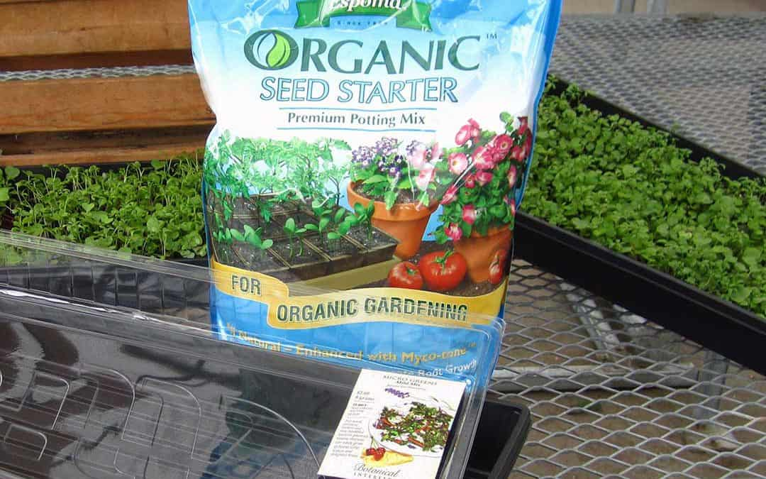 Micro-greens, Pruning and Birds in the Landscape