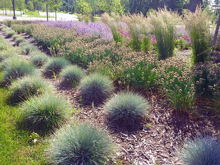 Taming Overgrown or Too Large Gardens and Garden Design Tips