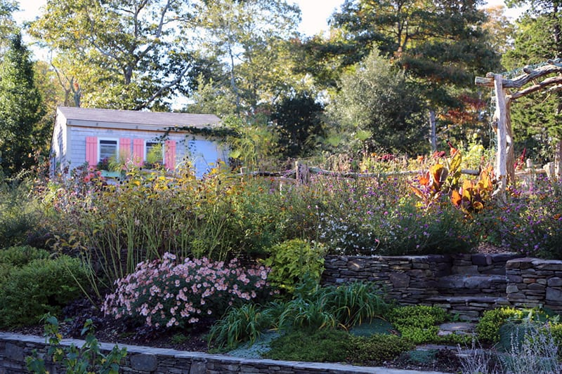 Perennial Plants and Perennial Gardens in Fall