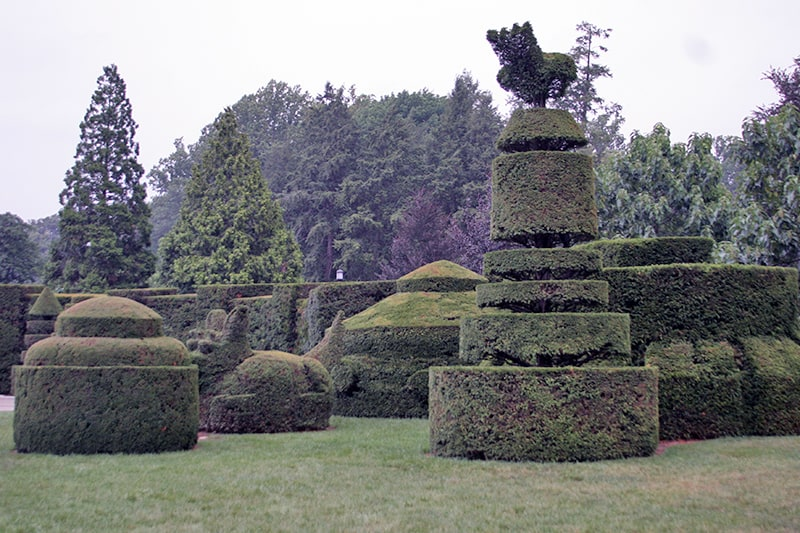 Asparagus, Topiary, and The Deadly Nightshade